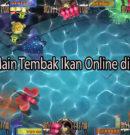 Keseruan Main Tembak Ikan Online di Indonesia